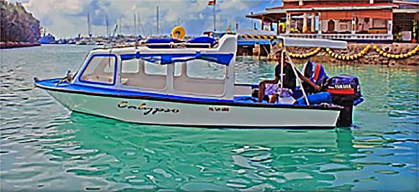 Little marvel: The smaller Calypso boat for eight passengers
