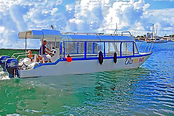 Big opportunity for sea viewing: The Calypso glass-bottomed boat with room for 30 passengers